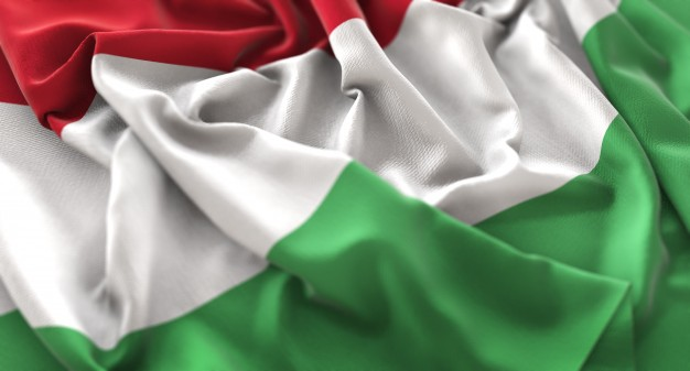 National Holiday in Hungary: we commemorate our revolution against the Habsburgs and you will see people wearing a rosette with the colours of the national flag of Hungary